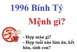 tuổi tý 1996 mệnh gì